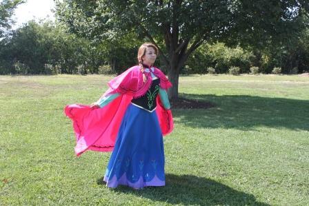 Anna Frozen Princess Theme Party
