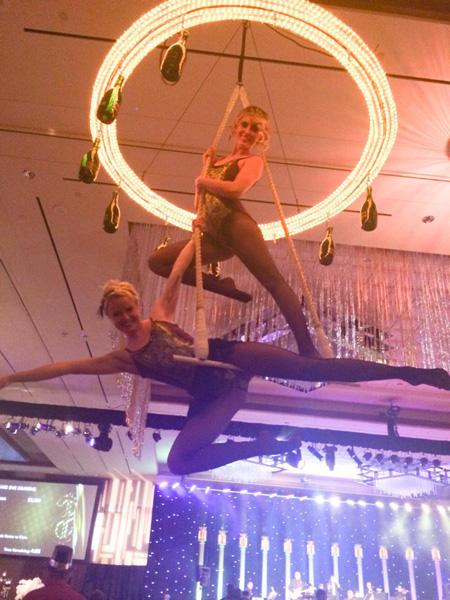 Aerial Performer Bartenders